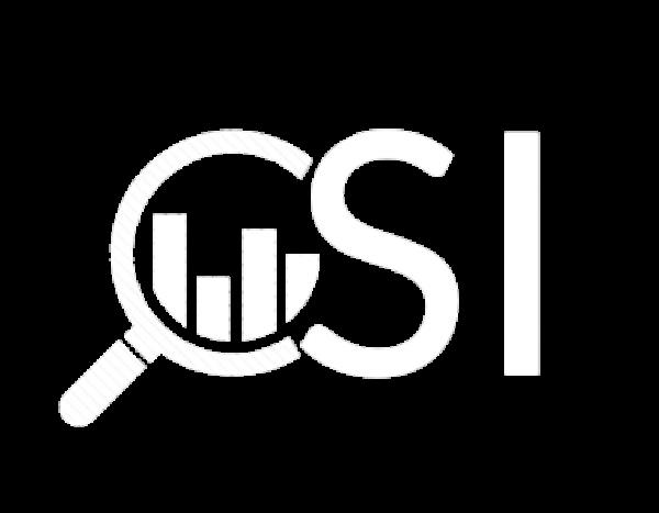 CSI Systems